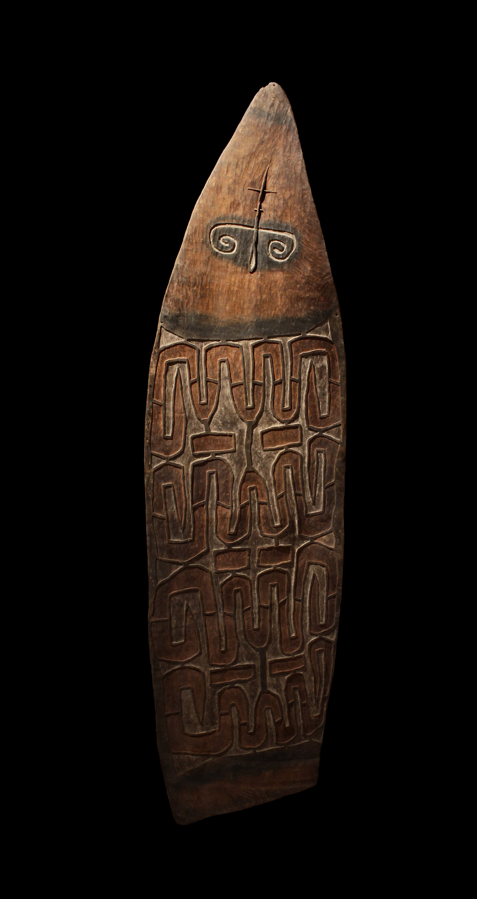 ASMAT SHIELD